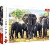 TREFL PUZZLE 1000 el.  Afrykańskie słonie 10442