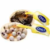 Only Halloween 100g